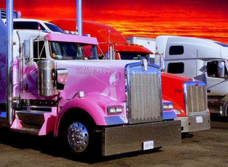 Trucker's oasis plan nixed.