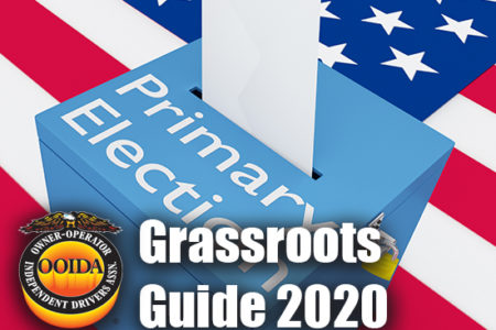 Grassroots Guide 2020 primary
