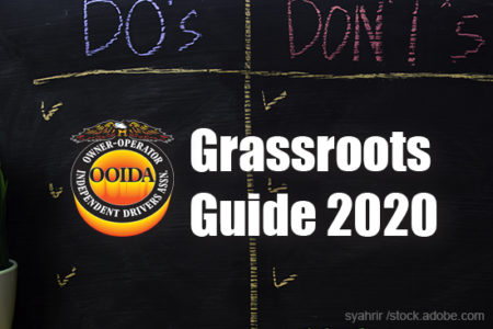 Grassroots Guide 2020