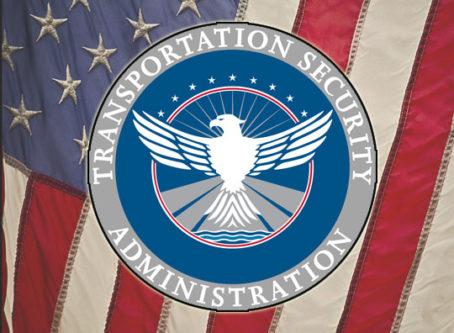 TSA emblem, US flag