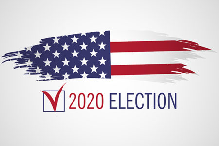 2020 elections guide