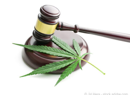 Hemp lawsuit