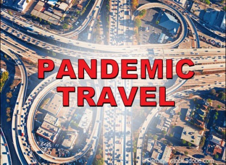 Travel dropped nearly in half during the pandemic