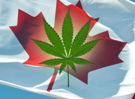Pot bust charges dismissed against Canadian trucker