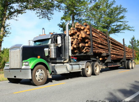 Timber-hauling truck